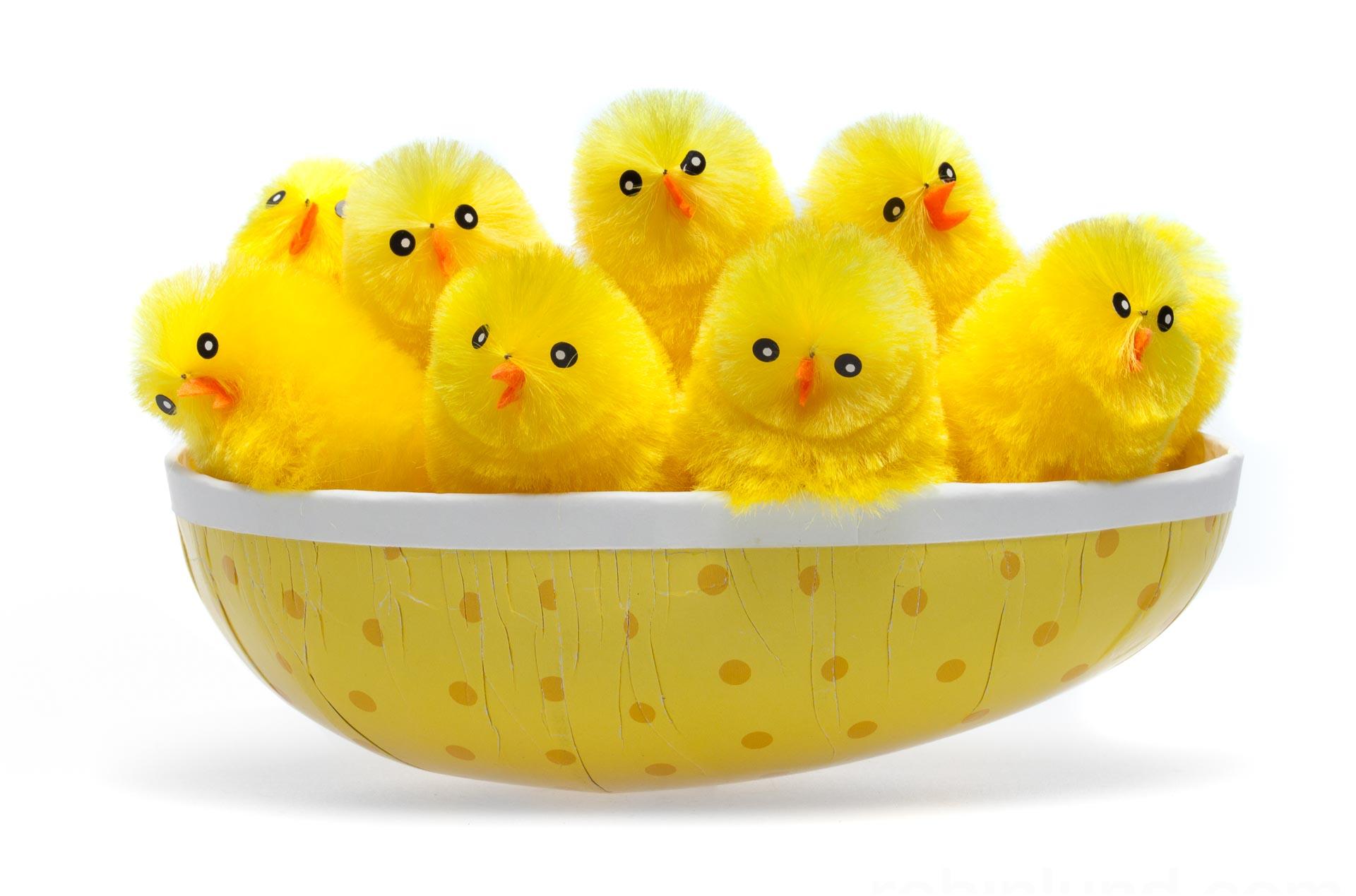 Jennys sunn og glad (Påskekyllinger i egg), betalt